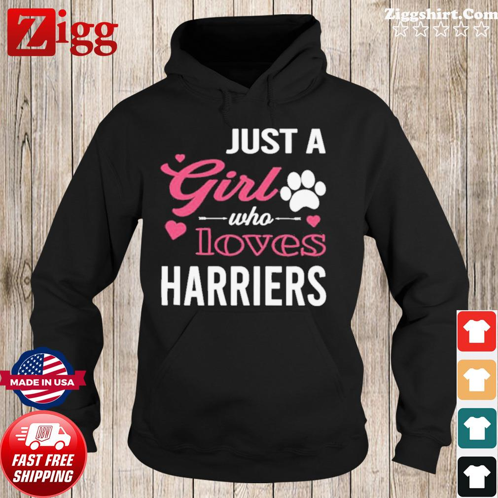 Just A Girl Who Loves HARRIERS Dog Pet s Hoodie